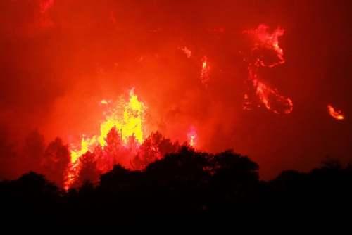 آتشسوزی جنگلی در جنوب فرانسه/ خبرگزاری فرانسه