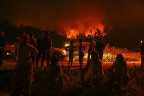 تماشای آتشسوزی جنگلی در