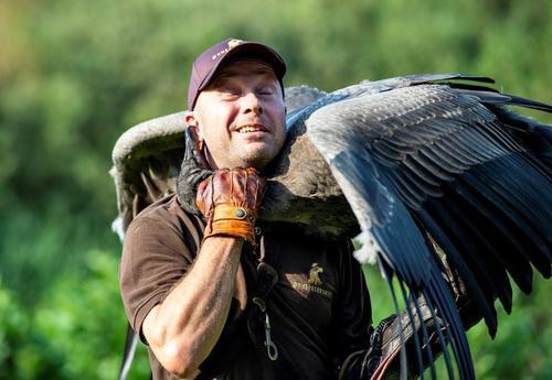 یک تمرین دهنده عقاب و کرکس در دانمارک/ رویترز و خبرگزاری فرانسه