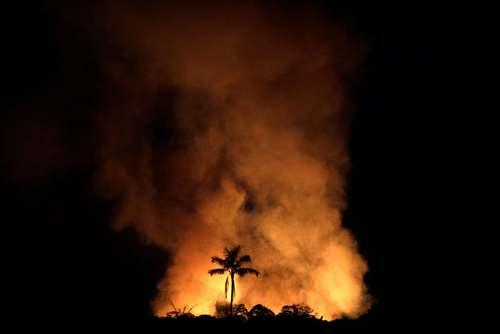 آتش سوزی در جنگلهای آمازون برزیل/ رویترز