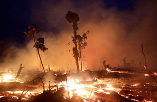 آتش سوزی جنگلهای آمازون در برزیل/ رویترز