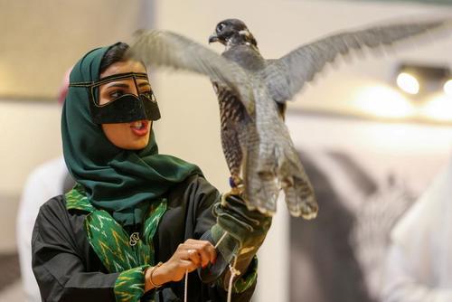 نمایشگاه شکار در ریاض عربستان / رویترز