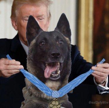 تصویر فتوشاپی که ترامپ منتشر کرد