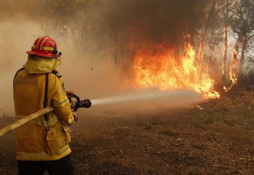 آتش سوزی جنگلی در استرالیا/ آسوشیتدپرس