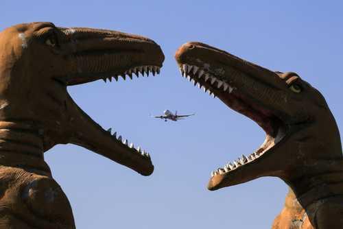 عبور یک هواپیمای مسافربری از فراز پارک حیوانات در شهر