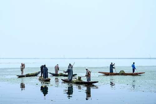 تمیز کردن دریاچه
