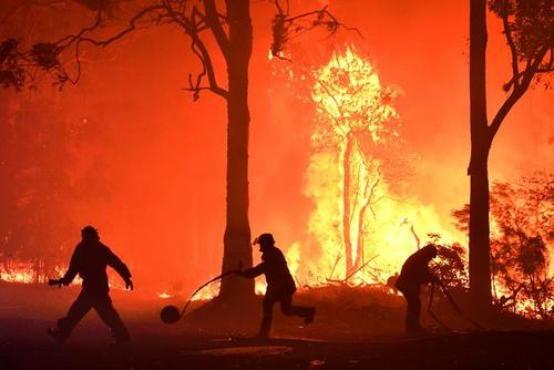 تلاش برای مهار آتشسوزی جنگلی در استرالیا/ رویترز