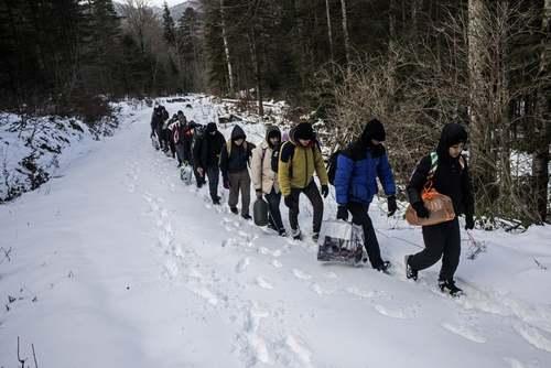 یک گروه از پناهجویان مصری در حال عبور از منطقه مرزی بوسنی و ورود به خاک کرواسی/ آسوشیتدپرس