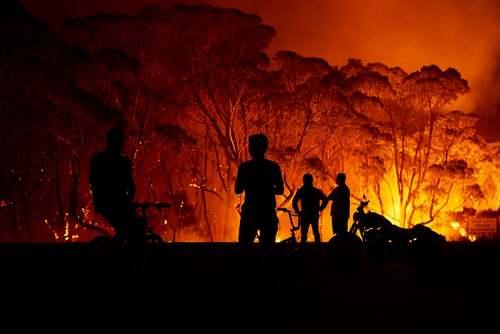 آتش سوزی جنگلهای استرالیا/ گتی ایمجز