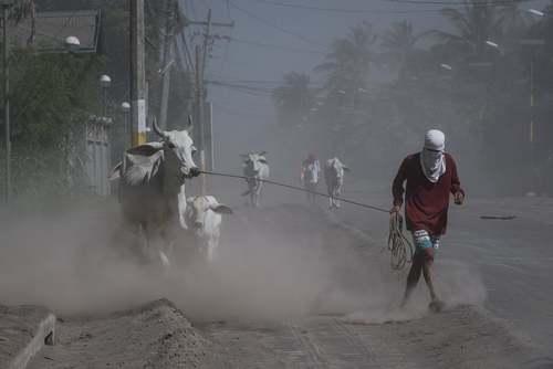 گریز مردم و احشام از نزدیکی آتشفشان در حال فعالیت