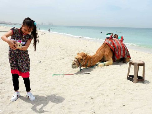 سلفی با شتر در ساحل