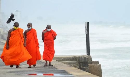 قدم زدن راهبان بودایی در تفرجگاهی در شهر