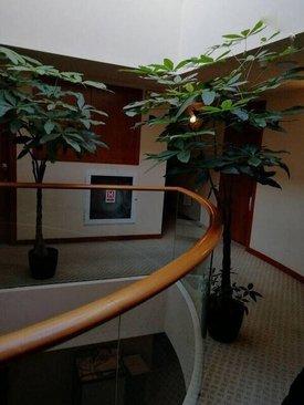 نمای بیرونی اتاق منصوری در طبقه ۶