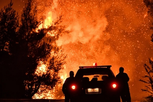 آتشسوزی جنگلی در یونان/ خبرگزاری فرانسه