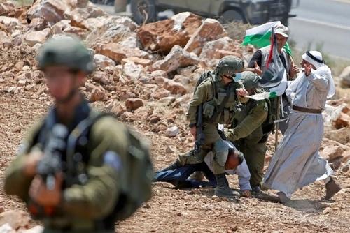 دستگیری معترض فلسطینی شهرک سازیهای اسراییل در کرانه باختری/ رویترز
