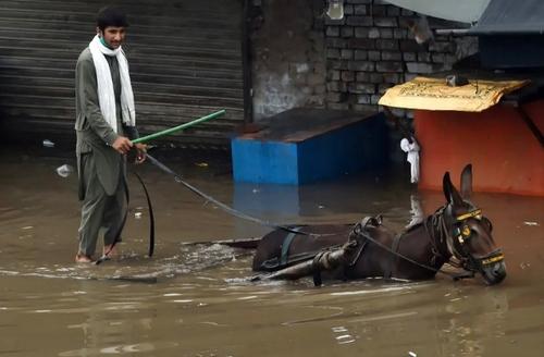 سیل در لاهور پاکستان/ خبرگزاری فرانسه