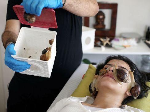 حلزون درمانی برای ماساژ پوست در شهر