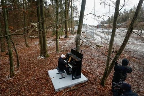 اعتراض یک هنرمند پیانیست به پروژه عبور یک اتوبان از جنگلی در آلمان/ رویترز