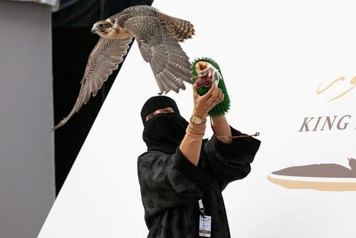 حضور نخستین زن سعودی در جشنواره شکار ملک عبدالعزیز در شهر ریاض عربستان سعودی/ رویترز