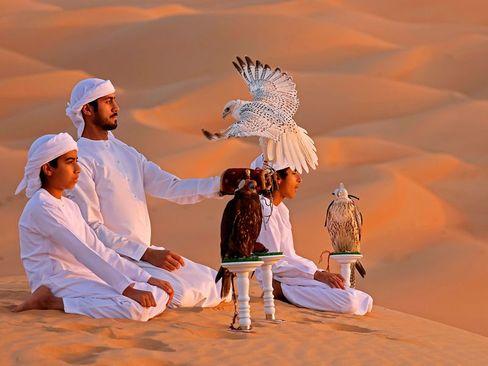 تربیت پرندگان شکاری در صحرای