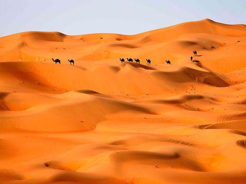 صحرای