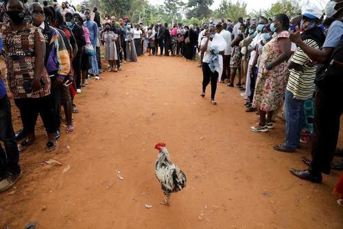 صف رای گیری در انتخابات ریاست جمهوری اوگاندا در یک حوزه در شهر کامپالا/ رویترز