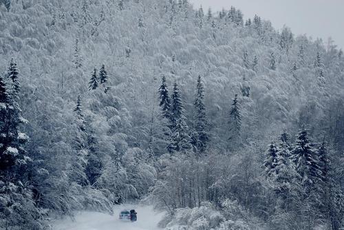 جاده ای برفی در شمال سوئد/ رویترز