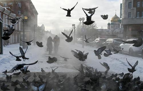 شهر اومسک روسیه/ رویترز