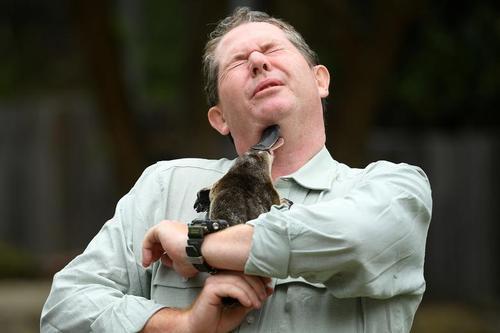روز جهانی حیات وحش در باغ وحش