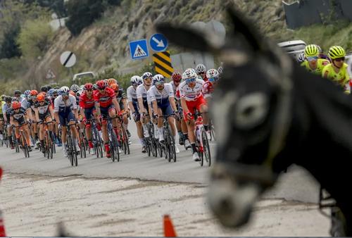 مسابقات بین المللی دوچرخه سواری در آنتالیا ترکیه/ خبرگزاری آناتولی