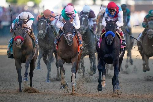 مسابقات اسب سواری در شهر لویی ویل ایالت کنتاکی آمریکا/ رویترز