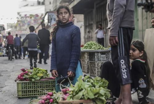 فروش سبزی در بازار زاویه غزه/ زوما
