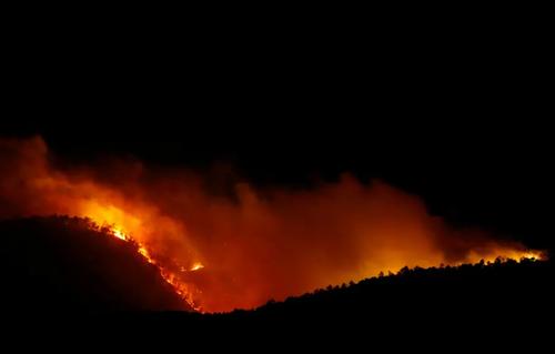 آتش سوزی جنگلی در اسپانیا و یونان/ رویترز و خبرگزاری فرانسه