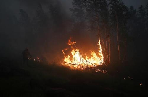 آتش سوزی جنگلی در روسیه/ رویترز