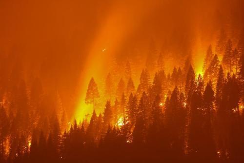 آتش سوزی مهیب جنگلی در ایالت کالیفرنیا آمریکا/ رویترز
