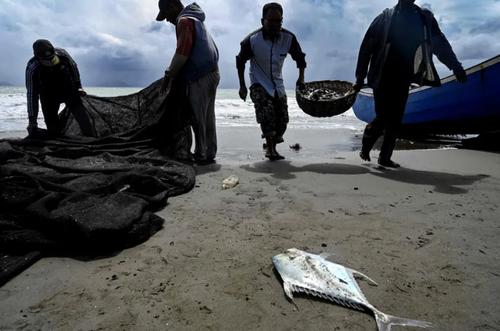 ماهیگیران در ساحل بندر آچه اندونزی/ خبرگزاری فرانسه