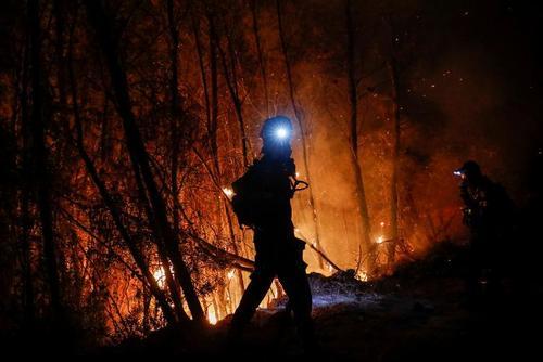 آتش سوزی جنگلی در یونان/ رویترز