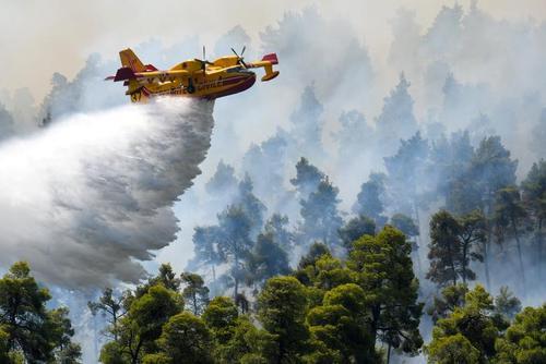 عملیات مهار آتش سوزی جنگلی در جزیره