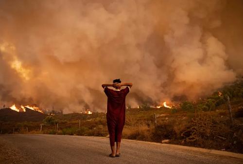 آتش سوزی جنگل ها و مراتع در مراکش/ خبرگزاری فرانسه