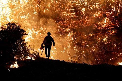 آتش سوزی جنگلی در ایالت کالیفرنیا آمریکا/ رویترز