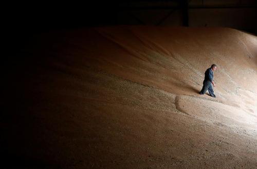 یک سیلوی ذخیره گندم در نزدیکی شهر نانت فرانسه/ رویترز