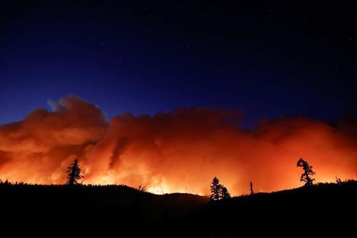 آتش سوزی جنگل های ایالت کالیفرنیا آمریکا/ رویترز