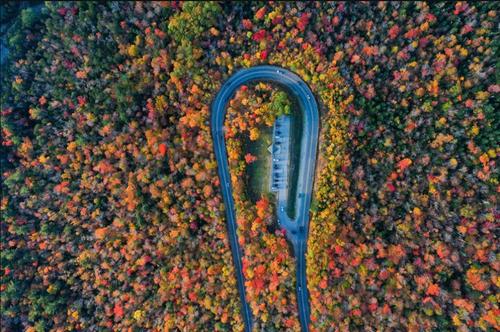 طبیعت پاییزی در نیوهمپشایر آمریکا/ خبرگزاری آناتولی